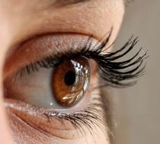 Augengesundheit   Eye Health