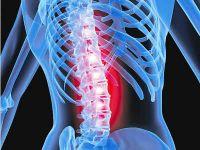 Rheuma & Arthritis | Rheumatism & Arthritis