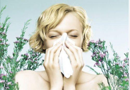 Allergie auflösen | Allergy Resolve