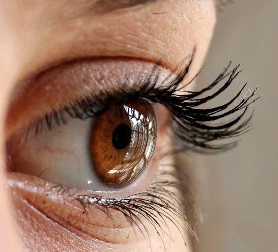 Augengesundheit | Eye Health