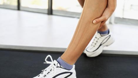 Muskel Regeneration I   Muscle Regeneration I