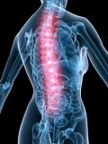 Becken & LWS | Pelvis & Lumbar Spine