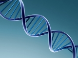 DNS Optimierung | DNA Optimizer