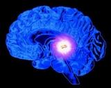 12 Dauertraining | Melatonin und DMT